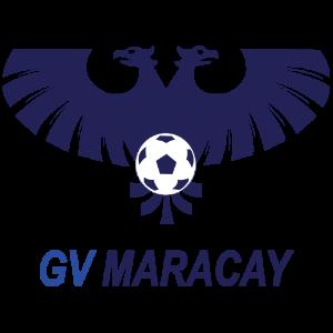 Fantasy Liga FUTVE | Gran Valencia F.C
